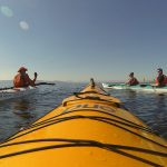 Kayaking tour in Cape Town