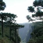 Aparados da Serra: Itainbezinho, trail of Rio do Boi and Fortaleza